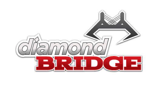 diamondBridge logo Main Image